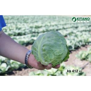 Капуста белокочанная KS 412 (АКИРА) F1 Kitano Seeds