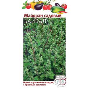 Майоран садовый БАЙКАЛ Гавриш