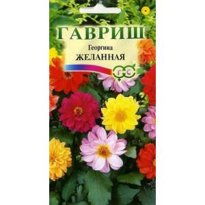Однолетник Георгина Желанная Гавриш