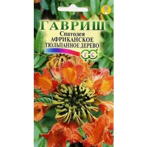 Комнатные Спатодея Африканское тюльпанное дерево Гавриш
