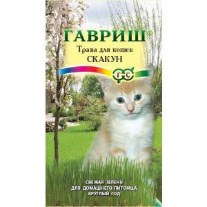 Трава для кошек Скакун Гавриш