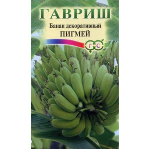 Банан декоративный ПИГМЕЙ Гавриш