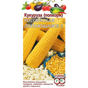 Кукуруза попкорн РОССИЙСКАЯ ЛОПАЮЩАЯСЯ 3 Гавриш