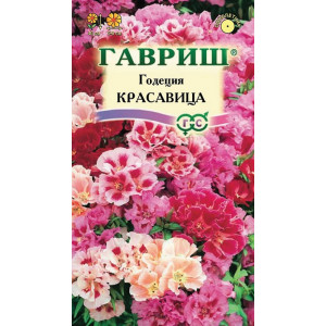 Однолетник Годеция Красавица  Гавриш