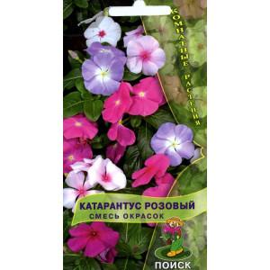 Комнатные Катарантус розовый Смесь окрасок ЦВ Поиск