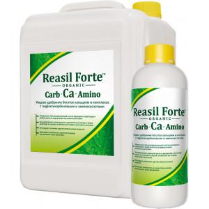 Кальций содержащее удобрение Reasil Forte Carb-Ca-Amino Сила жизни