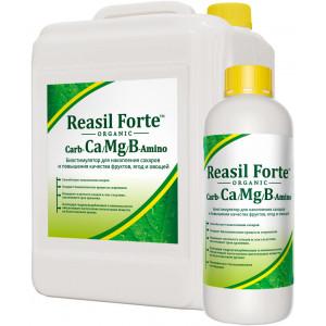 РЕАСИЛ ФОРТЕ Carb-Ca/Mg/B / Reasil Forte Carb-Ca/Mg/B Сила жизни