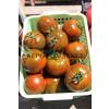 Томат АФРИКА F1 / AFRIKA F1 Quality Seeds  фото 3