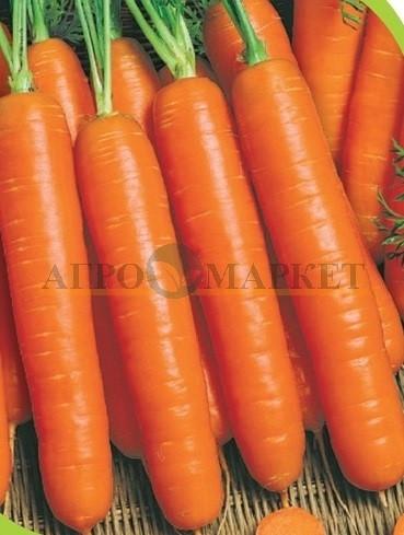 Морковь ЮКОН F1 / YUKON F1 Syngenta
