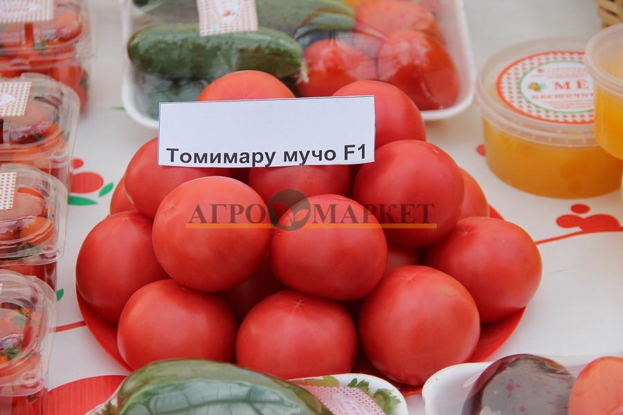 Томат ТОМИМАРУ МУЧО F1 / TOMIMARO MUCHO F1 Seminis  фото 2