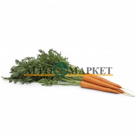 Морковь ВАРМИЯ F1 / VARMIA F1 Rijk Zwaan  фото 3