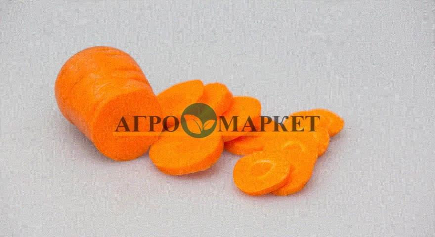 Морковь АБАКО F1 / ABACO F1 Seminis  фото 5