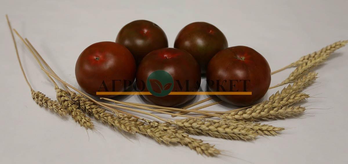 Томат АФРИКА F1 / AFRIKA F1 Quality Seeds