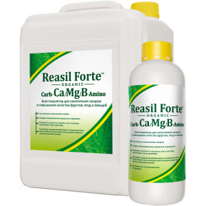 РЕАСИЛ ФОРТЕ Carb-Ca/Mg/B Amino/ Reasil Forte Carb-Ca/Mg/B Amino Сила жизни
