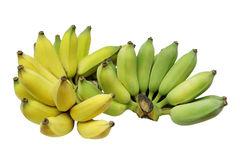 Банан декоративный