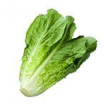 Салат ромэн